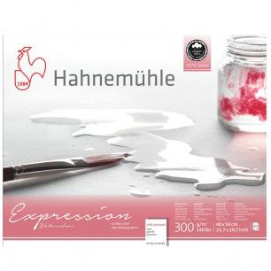 Bloc Hahnemulhe® Expression - 300 gr/m² - collés 4 côtés - Grain fin